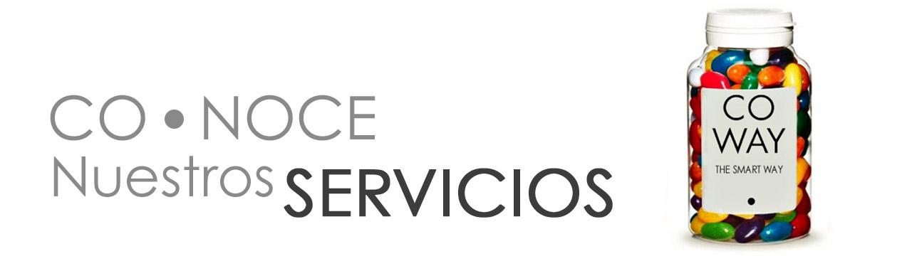 Conoce nuestro Servicios